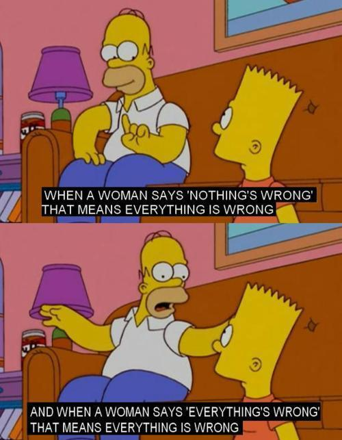 Homer Simpson On Women