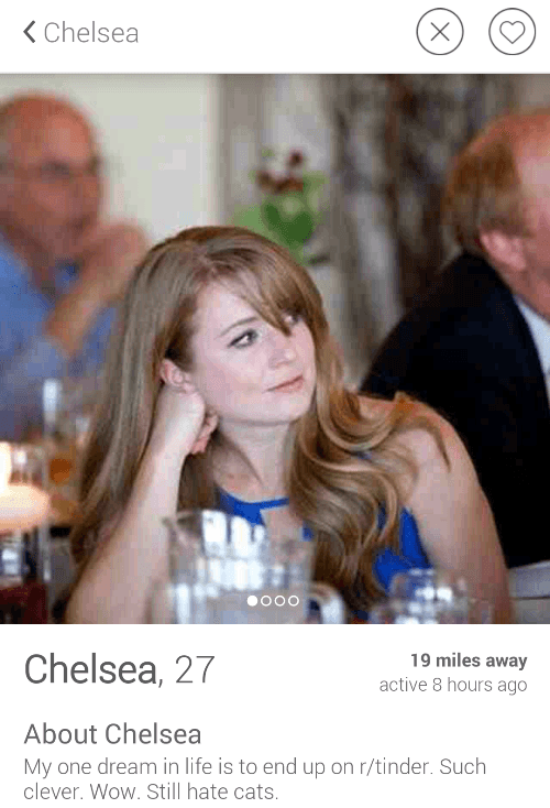 33 Funny Tinder Profiles That Definitely Got People Laid