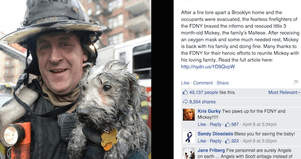 faith og humanity 26 moments that restored our faith in humanity this year sometimes you need a reminder that people can do wonderful things.