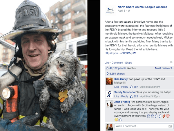 fdny-saves-puppy