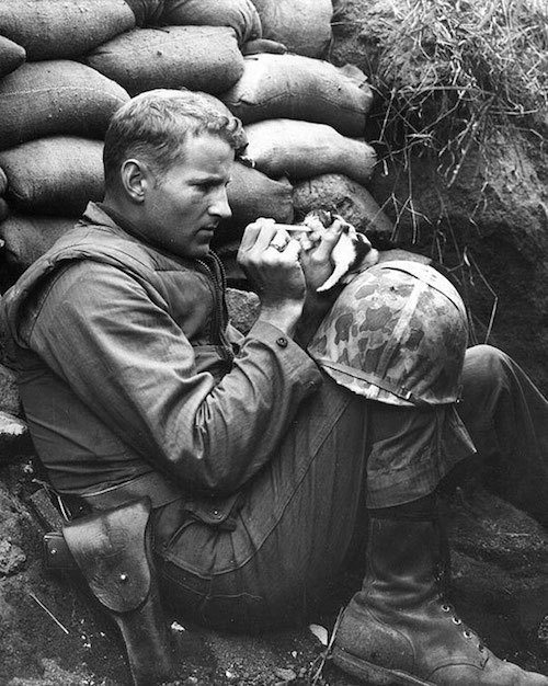 Soldier and Kitten