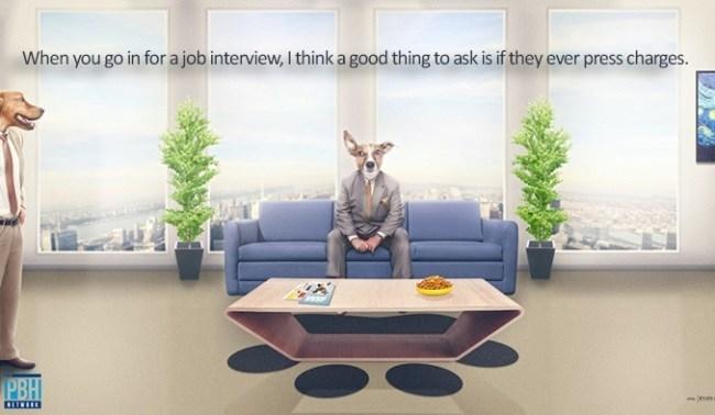 Jack Handey Quotes Job Interviews