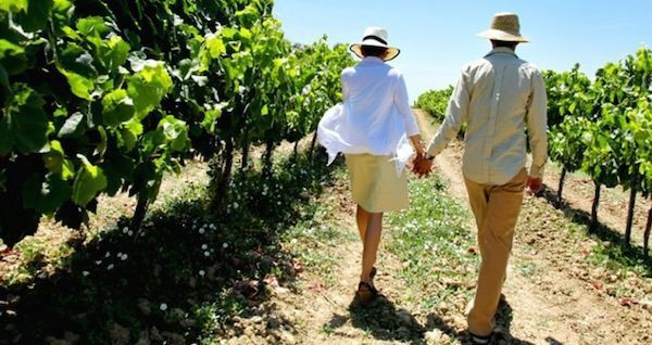 long-island-wine-tour-feature