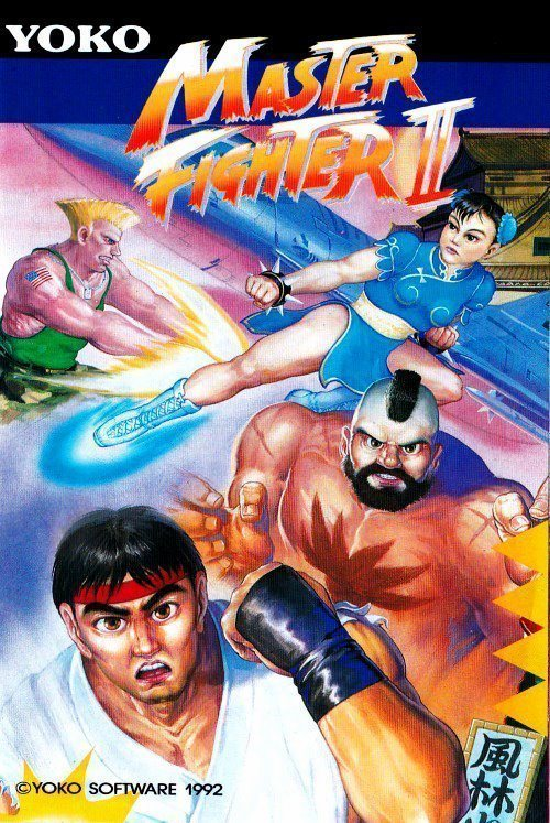 Master Fighter