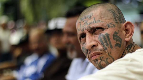 MS 13 Gang Leader