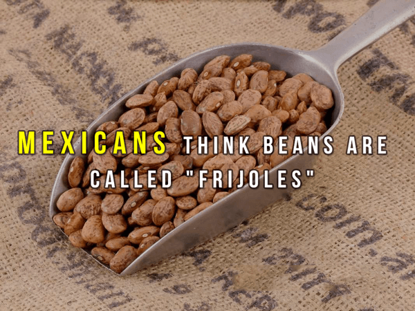 Useless Facts About Beans