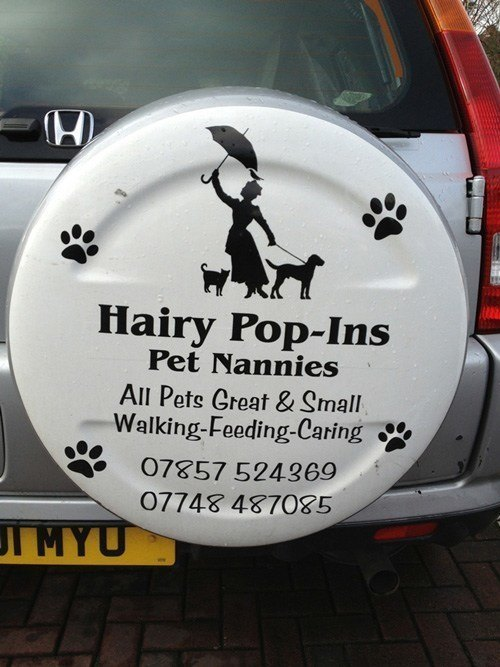 Hairy Popins