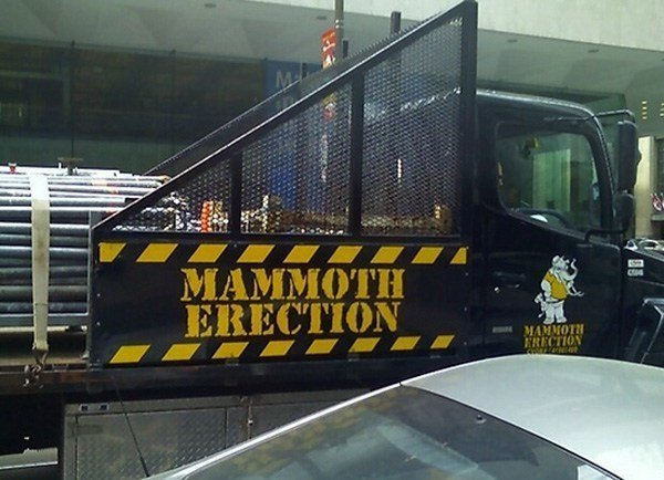 Mammoth Erection