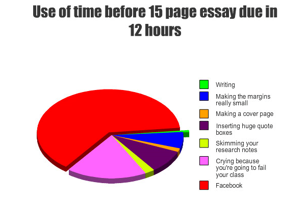 Writing Essays Pie Chart
