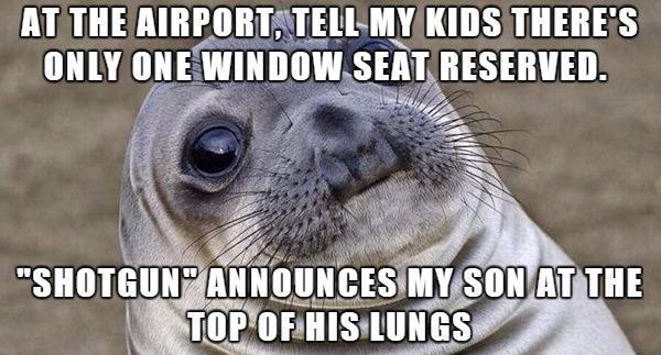 Awkward Seal