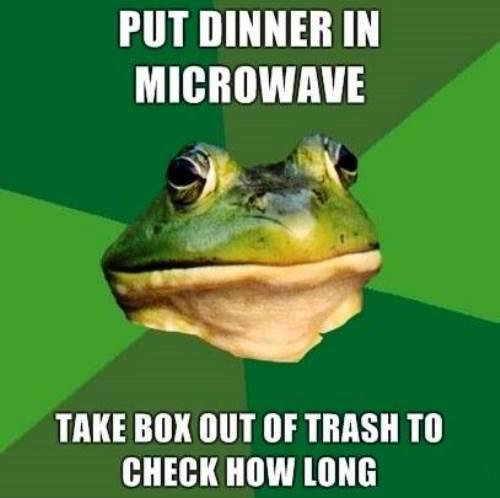 Bachelor Frog Makes Dinner