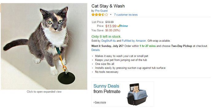 Cat Stay Wash
