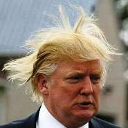 You Suck As Much As Donald Trump's Hair