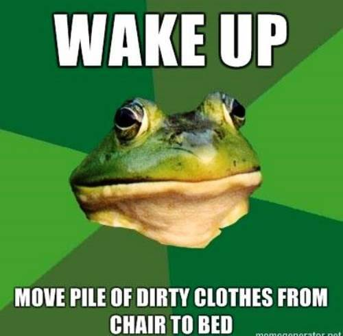 foul bachelor frog the funniest memes in the history of the internet