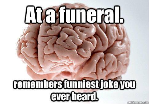 Funny Memes Scumbag Brain