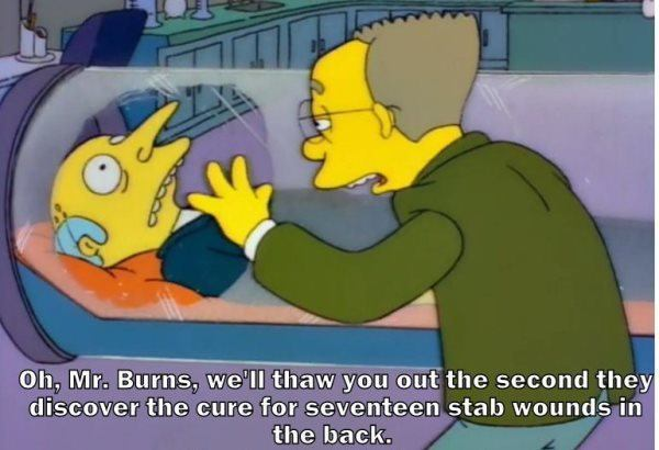 Thaw Out Mr Burns