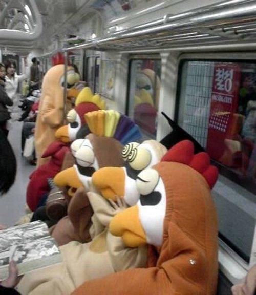 Angry Birds Insane Transit
