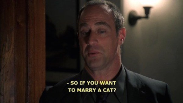 Detective Stabler Gay Rights