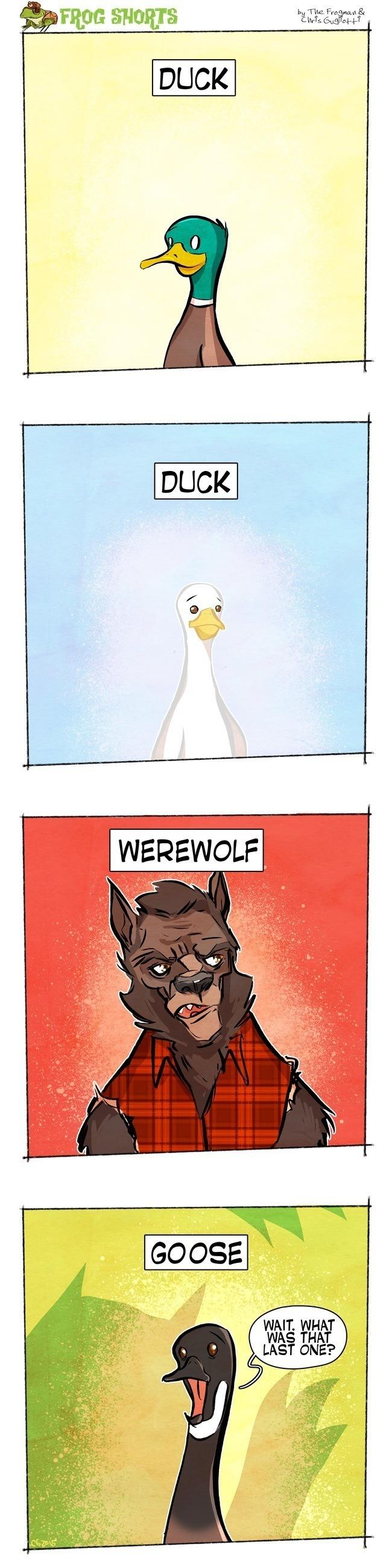 Duck Duck Werewolf