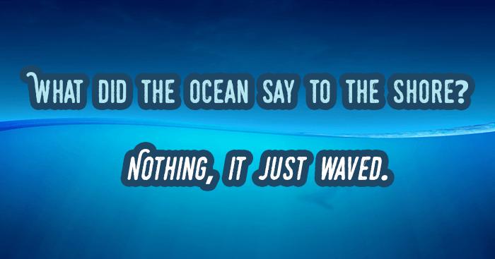 Ocean To The Shore
