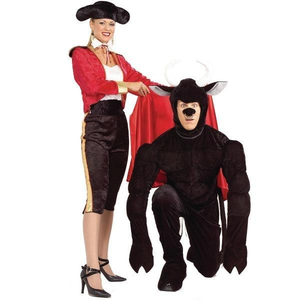 Bull Bullfighter