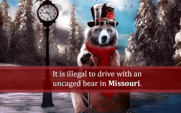 Drive Uncaged Bear