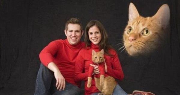 Engagement Picture Fails