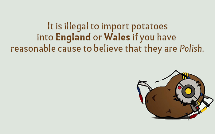 Imported Potatos