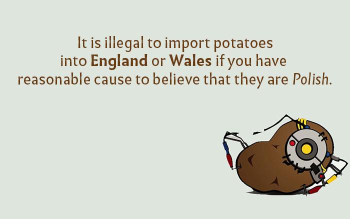 Imported Potatos