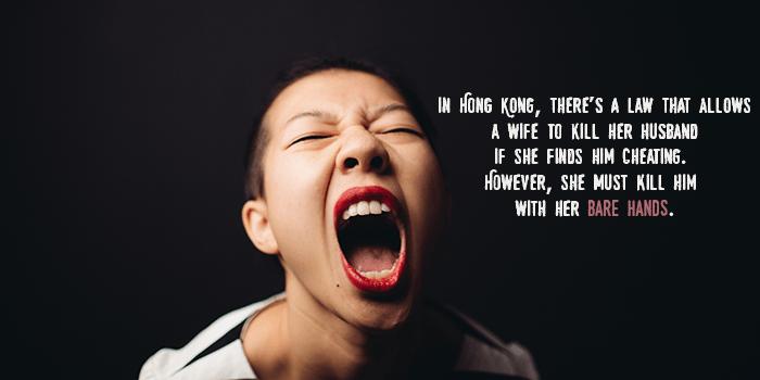 Killing Your Husband