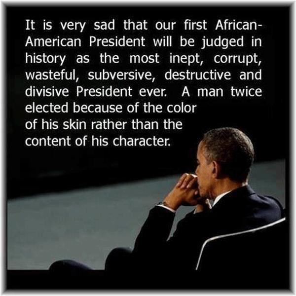 Obama Skin