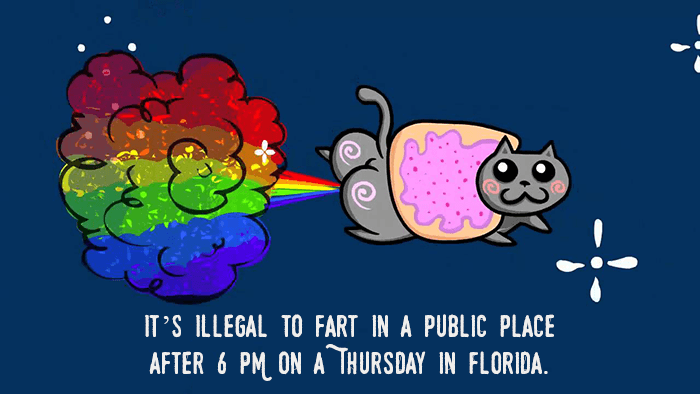Public Farting In Florida