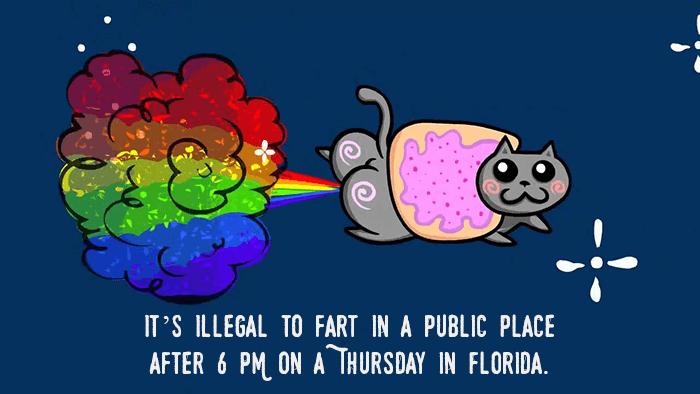 Public Farting In Florida