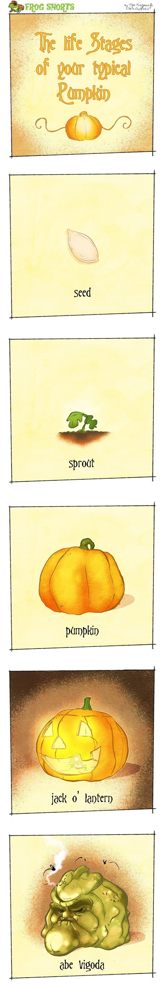 Frog Shorts Pumpkin
