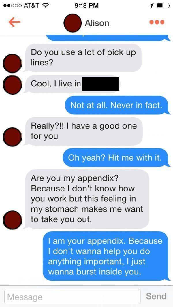 Tinder Pick Up Lines Appendix