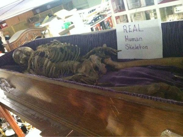 Real Skeleton Thrift Shop