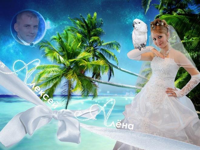 Russian Bride Parrot