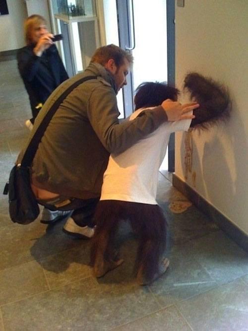 Sick Orangutan