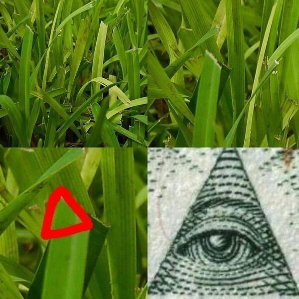Grass Or Illuminati