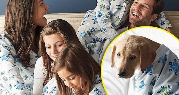 Matching Pajamas Family Dog