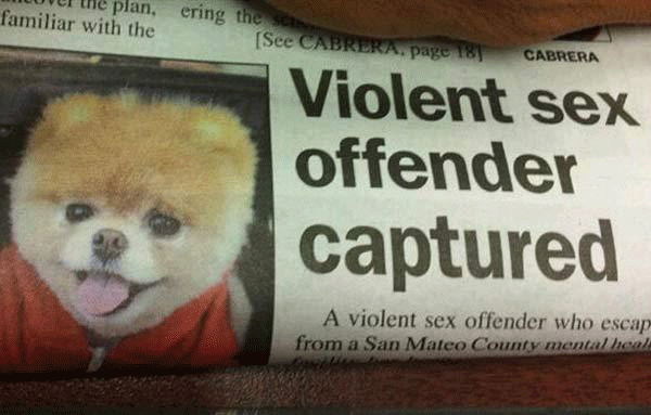 Sex Offender Captured