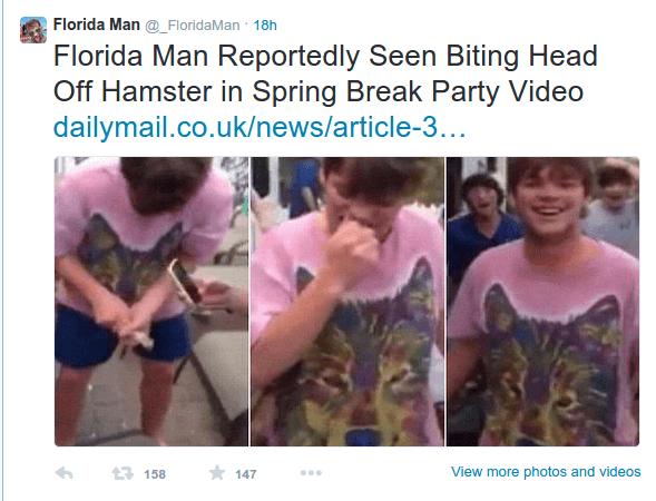 Florida Hamster Biter