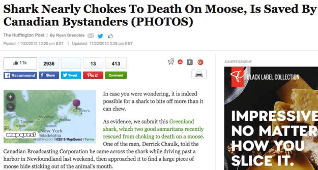 Choking Shark