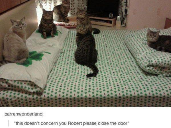 Close The Door Robert