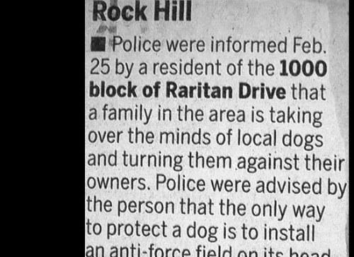 Dog Mind Control