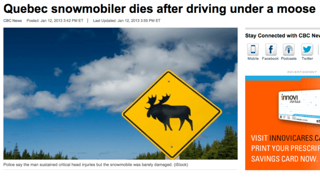 Driving Under A Moose