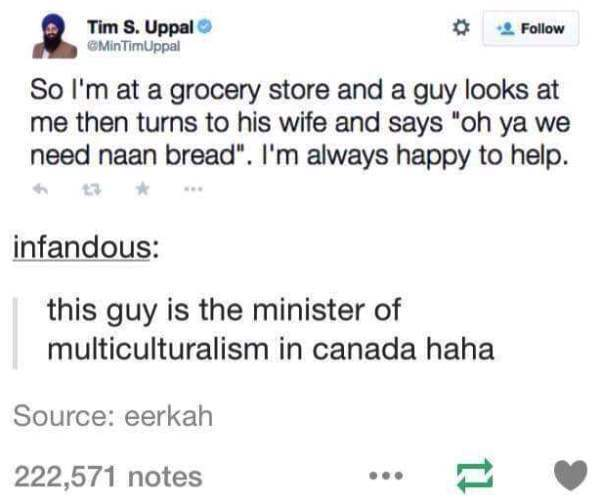 Minister Of Multiculturalism