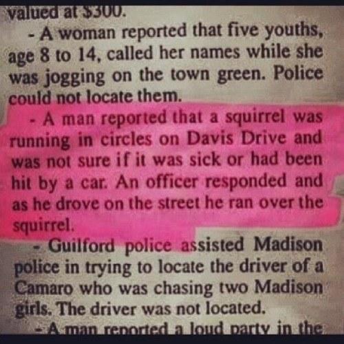 Sick Squirrel