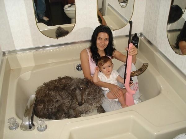 Children In Danger Gun Tub