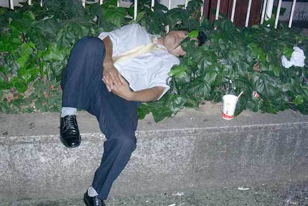 Asleep In Bushes